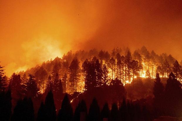 Cháy rừng tại California, 50.000 người phải sơ tán - Ảnh 1.