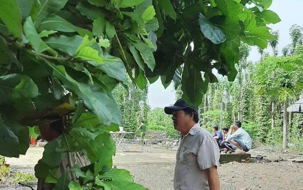 Phát hiện thi thể trong vườn tiêu ở Đồng Nai - Ảnh 1.