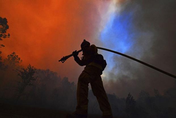 Cháy rừng tại California, 50.000 người phải sơ tán - Ảnh 3.
