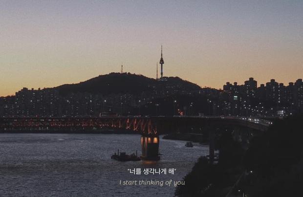 Bộ ảnh xem xong trào dâng thương nhớ Seoul: Đã đến mùa nơi này đẹp nhất, nhưng năm nay ta không thể gặp nhau - Ảnh 3.