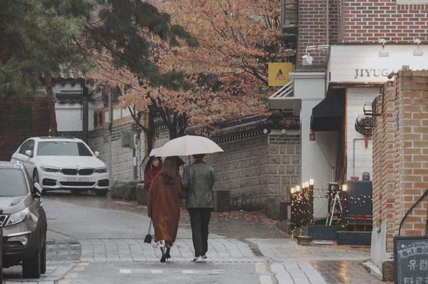 Bộ ảnh xem xong trào dâng thương nhớ Seoul: Đã đến mùa nơi này đẹp nhất, nhưng năm nay ta không thể gặp nhau - Ảnh 4.
