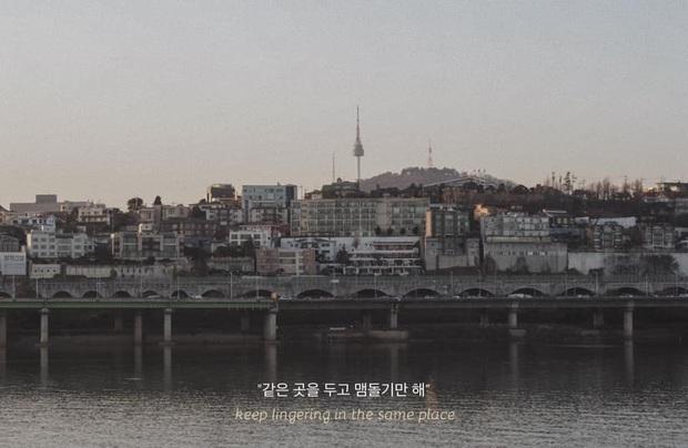 Bộ ảnh xem xong trào dâng thương nhớ Seoul: Đã đến mùa nơi này đẹp nhất, nhưng năm nay ta không thể gặp nhau - Ảnh 16.