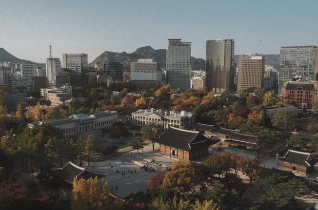 Bộ ảnh xem xong trào dâng thương nhớ Seoul: Đã đến mùa nơi này đẹp nhất, nhưng năm nay ta không thể gặp nhau - Ảnh 18.