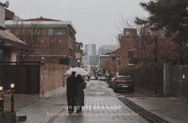 Bộ ảnh xem xong trào dâng thương nhớ Seoul: Đã đến mùa nơi này đẹp nhất, nhưng năm nay ta không thể gặp nhau - Ảnh 10.