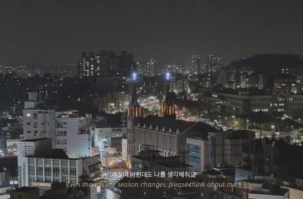 Bộ ảnh xem xong trào dâng thương nhớ Seoul: Đã đến mùa nơi này đẹp nhất, nhưng năm nay ta không thể gặp nhau - Ảnh 13.