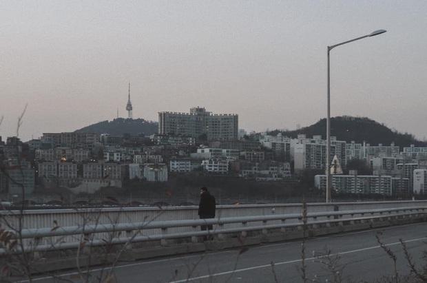 Bộ ảnh xem xong trào dâng thương nhớ Seoul: Đã đến mùa nơi này đẹp nhất, nhưng năm nay ta không thể gặp nhau - Ảnh 11.