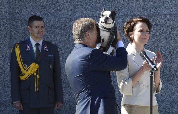 Là nguyên thủ quốc gia cũng không thoát khỏi kiếp con sen: Những khoảnh khắc si mê chó cưng của Tổng thống Phần Lan gây sốt MXH - Ảnh 4.