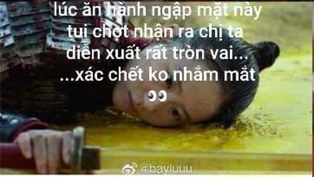 Netizen hùa nhau chế ảnh diễn xuất của Lưu Diệc Phi ở Mulan: Bất biến toàn tập, tỷ chết tâm rồi mấy em ơi! - Ảnh 11.