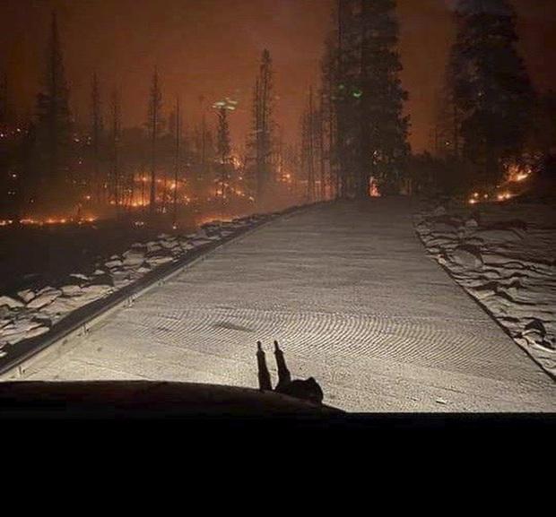 Giải cứu hơn 200 người bị mắc kẹt do cháy rừng ở California, Mỹ - Ảnh 4.