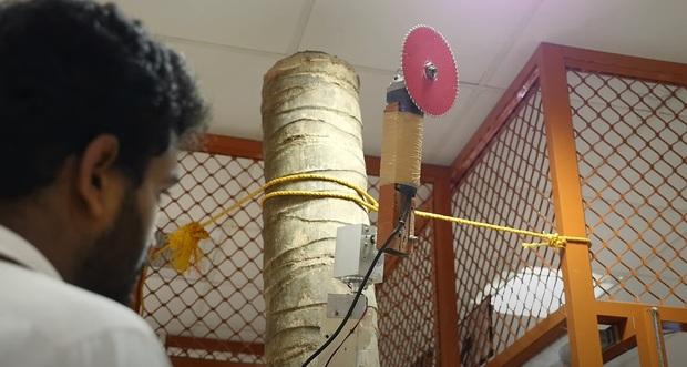 Các nhà khoa học Ấn Độ phát triển thành công robot hái dừa, năng suất thu hoạch cao hơn cả con người - Ảnh 4.