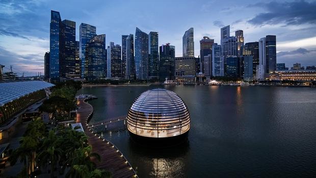 Ngắm toàn cảnh Apple Store nổi trên vịnh Marina, Singapore: đẹp ngỡ ngàng với thiết kế siêu độc đáo - Ảnh 2.