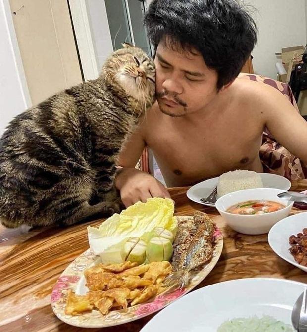 Trải lòng của người vợ bị cắm sừng: Tiểu tam mèo đã cướp chồng tôi trắng trợn như thế nào - Ảnh 2.