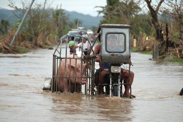 Nhiều vùng tại Philippines vẫn ngập sâu dù bão Vamco đã tan - Ảnh 3.