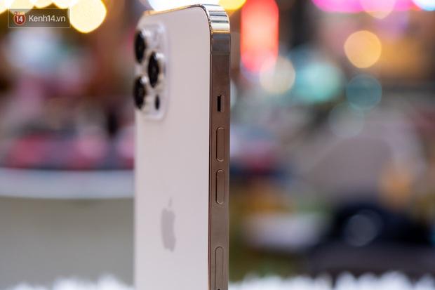So sánh nhanh iPhone 12 Pro Max và 11 Pro Max, có đáng lên đời? - Ảnh 1.