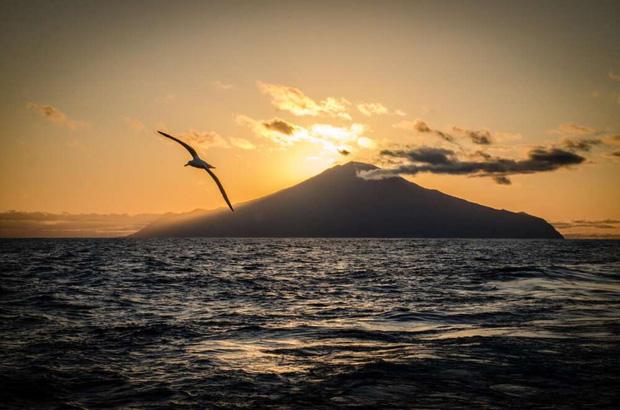 Hòn đảo tách biệt nhất thế giới nay trở thành khu bảo tồn lớn bậc nhất: Thiên đường chỉ tồn tại khi không có bàn tay của con người? - Ảnh 1.