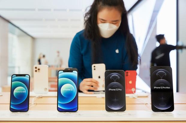Thương gia Việt ghẻ lạnh iPhone 12 mini: iPhone 12 Pro Max bày bán tràn lan, iPhone 12 mini không một ai dám nhập - Ảnh 1.