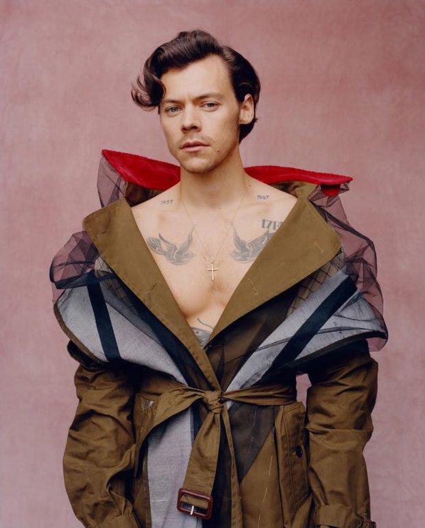 Harry Styles gây tranh cãi vì cởi trần mặc váy xòe, đầm dạ hội lên tạp chí, netizen choáng hơn khi đào lại bộ ảnh ba lê - Ảnh 6.