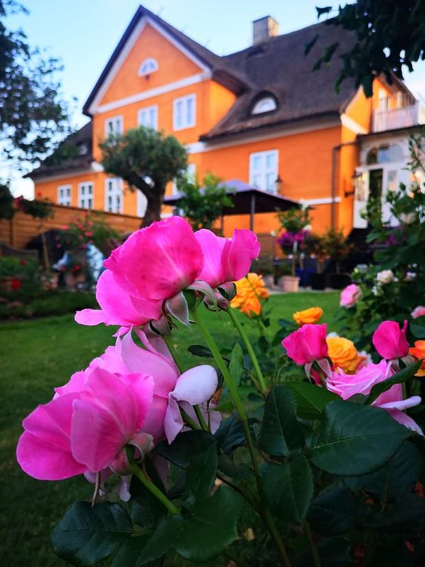 Ngôi nhà từ thế kỷ 18 của cô gái Việt ở Đan Mạch: Là di tích lịch sử, bất ngờ lớn nhất nằm ở mái nhà - Ảnh 20.