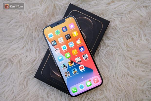 Ngọc Trinh, Linh Ka đứng ngồi không yên, hóng iPhone 12 chính hãng về Việt Nam - Ảnh 1.
