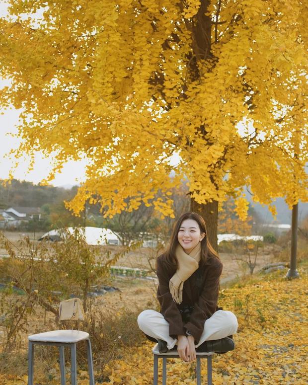 Seulgi (Red Velvet) thu về triệu tim chỉ nhờ bộ ảnh lá vàng mùa Thu, netizen tưởng hình tạp chí nhưng sự thật lại gây ngỡ ngàng - Ảnh 3.