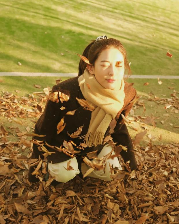 Seulgi (Red Velvet) thu về triệu tim chỉ nhờ bộ ảnh lá vàng mùa Thu, netizen tưởng hình tạp chí nhưng sự thật lại gây ngỡ ngàng - Ảnh 7.
