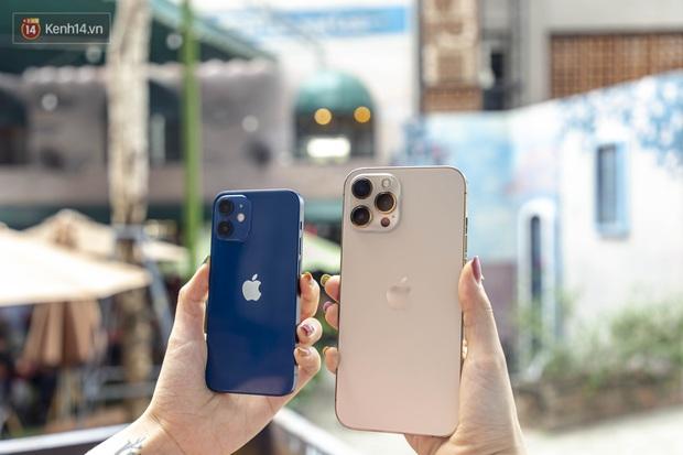 So sánh iPhone 12 Mini và 12 Pro Max - Ảnh 1.