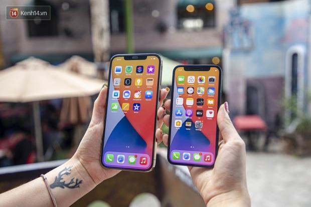 So sánh iPhone 12 Mini và 12 Pro Max - Ảnh 2.