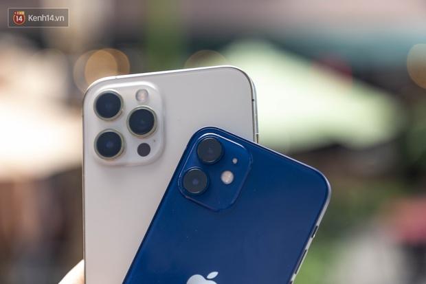 Đầu năm 2021, liệu những chiếc iPhone xách tay có còn thực sự là một món hời? - Ảnh 1.