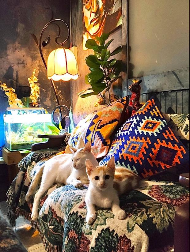 Lạc vào thế giới nghệ thuật với căn phòng DreamRoom của cô gái Đà Lạt: Nhìn thì màu mè nhưng lại chất phết - Ảnh 9.