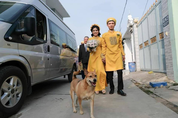 Đám cưới rộn ràng khắp MXH nhờ sự xuất hiện của... một chú chó, biểu cảm vui như Tết khiến ai cũng phải bật cười - Ảnh 2.