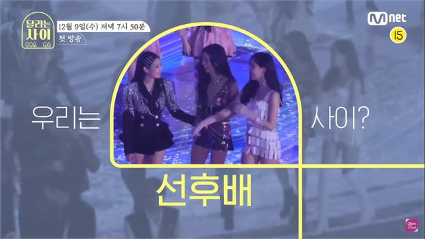 Mnet hết dỗi YG, đưa hẳn BLACKPINK lên teaser show thực tế mới? - Ảnh 2.