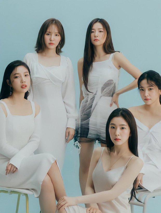 Nghe tin Red Velvet sắp comeback, Knet phẫn nộ, đòi quay lưng với Irene và chỉ trích SM trơ trẽn - Ảnh 2.