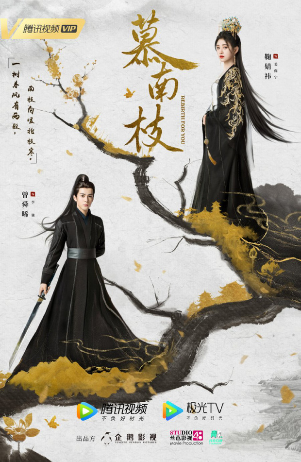 Như Ý Phương Phi chưa hết, Cúc Tịnh Y đã bị anh đẹp khác bế đi cưới gấp ở hậu trường phim mới - Ảnh 9.