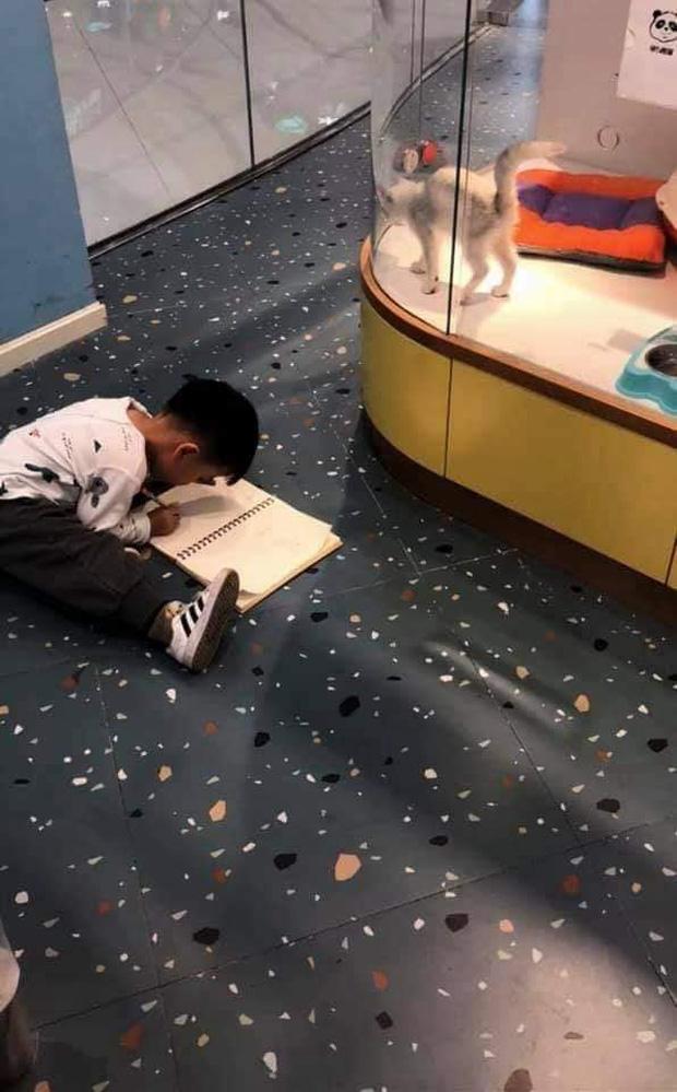 Cậu bé lăn lộn cả tiếng để vẽ mèo nộp cho cô giáo, tưởng đẹp miễn chê ai ngờ lại thành ra thế này - Ảnh 1.