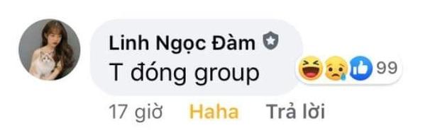 Bị fan cứng cà khịa quá nhiều, Linh Ngọc Đàm giận dỗi đòi đóng group hơn 50 nghìn thành viên - Ảnh 2.