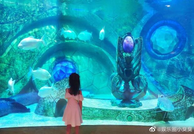 Tiểu công chúa 4 tuổi nhà Hoa hậu Thế giới Trương Tử Lâm gây sốt với chiều cao vượt trội, hứa hẹn trở thành mỹ nhân tương lai - Ảnh 7.