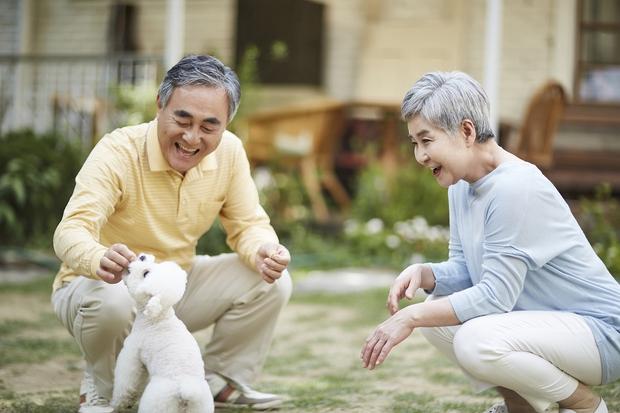 Chuyện bi hài ở CLB xem mắt của các bô lão Thượng Hải: 70 tuổi vẫn sợ bị đào mỏ, U90 mới quyết ly hôn vợ ngoại tình - Ảnh 3.