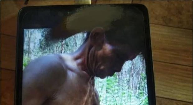 Gã hàng xóm cưỡng hiếp em gái 8 tuổi, anh trai 11 tuổi âm thầm chụp ảnh tố cáo với cảnh sát, hình ảnh được tiết lộ khiến ai cũng phẫn nộ - Ảnh 1.