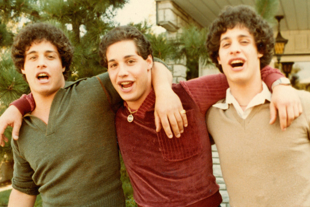 Thí nghiệm máu lạnh chia cắt anh em sinh ba ngay từ nhỏ - câu chuyện đau lòng được làm phim - Ảnh 1.