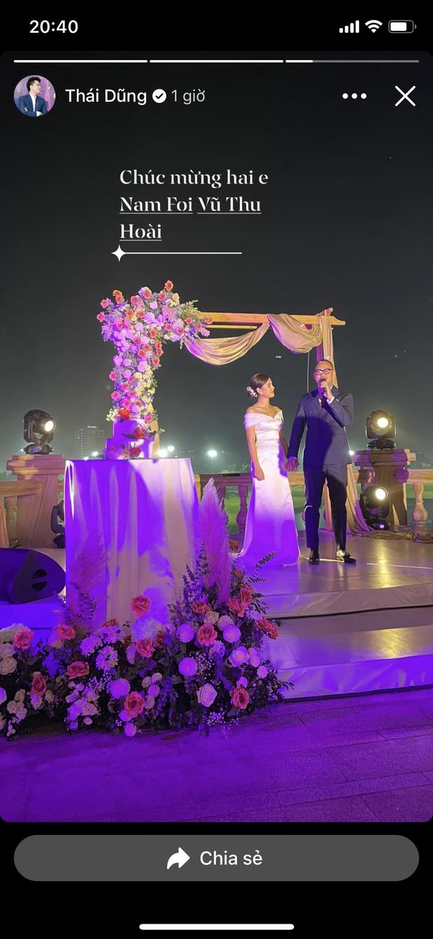 Việt Anh, cá sấu chúa Quỳnh Nga, Phanh Lee và hội bạn bè nổi tiếng quy tụ trong tiệc mời cưới của MC Thu Hoài - Ảnh 7.