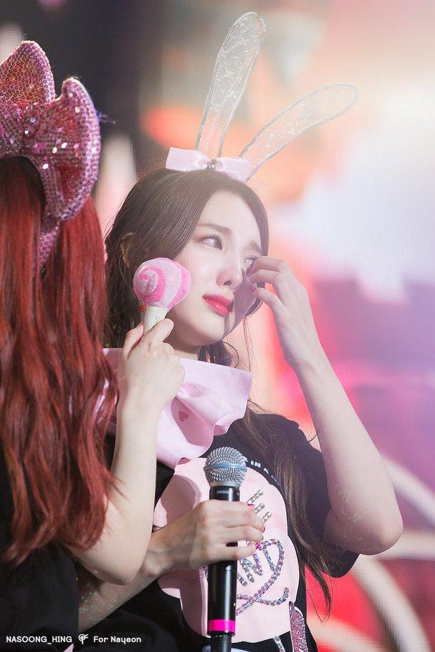 Chỉ vì cầm ngược micro mà Nayeon (TWICE) khóc nức nở khi đang diễn, hóa ra là giọt nước tràn ly sau sự cố kỹ thuật nghiêm trọng? - Ảnh 3.