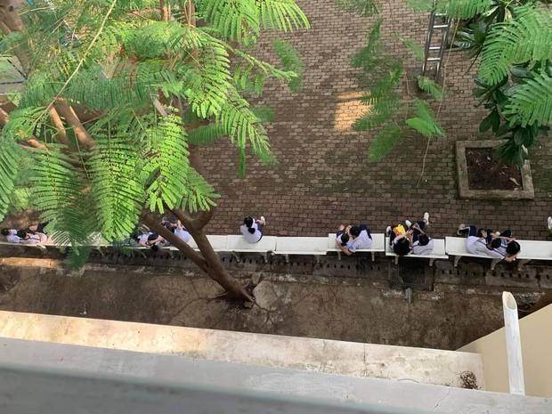 Khoảnh khắc giờ ra chơi của trường cấp 3 ở TP.HCM: Toàn các cặp đôi ngồi sát rạt - Ảnh 1.