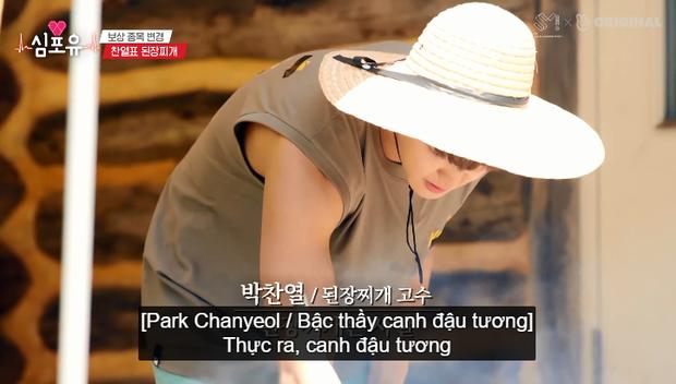 Chanyeol (EXO) bày cách nấu canh bất bại, fan ngã ngửa khi biết được bí quyết thực sự của anh chàng - Ảnh 2.