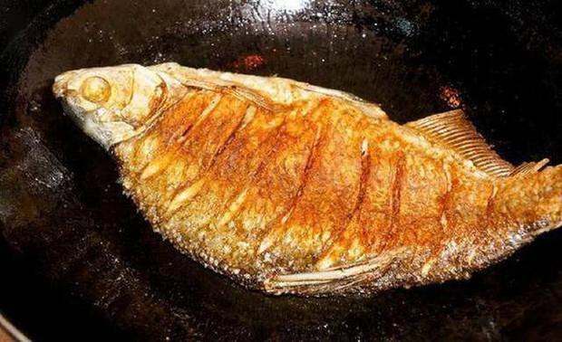 5 loại cá có khả năng biến thành độc dược, được khuyên nên ăn ít kẻo ung thư tìm đến - Ảnh 3.