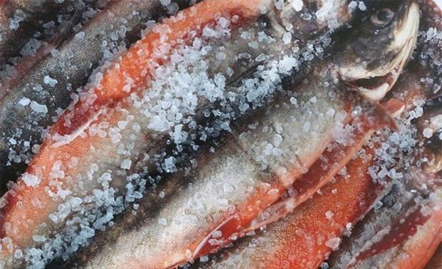 5 loại cá có khả năng biến thành độc dược, được khuyên nên ăn ít kẻo ung thư tìm đến - Ảnh 2.