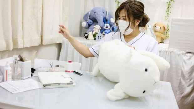 Độc lạ phòng khám chữa bệnh cho... thú nhồi bông ở Nhật, viện phí có thể lên đến 111 triệu - Ảnh 5.