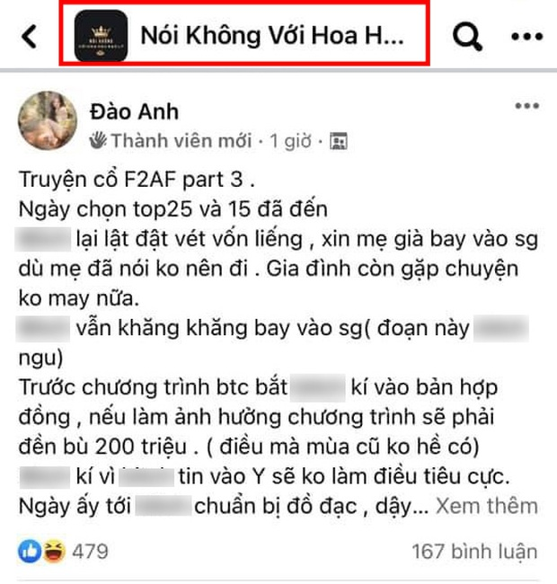 Đào Anh vào thẳng group anti kể chuyện về Hương Giang, còn mỉa mai gọi Võ Hoàng Yến là chị Bánh Tráng? - Ảnh 3.