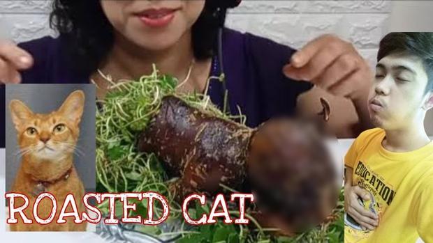 Ăn thịt chó mèo, vlogger người Việt gây tranh cãi dữ dội: nhiều người phẫn nộ, một số lại cho là chuyện bình thường - Ảnh 3.