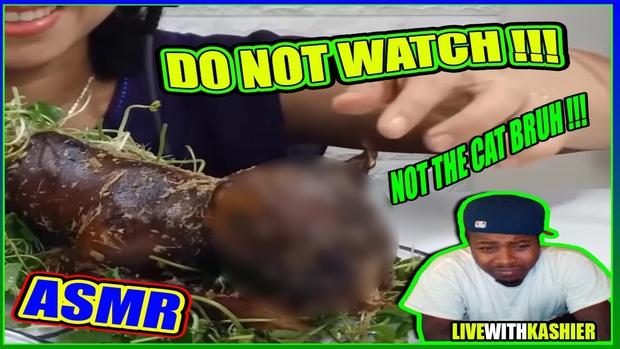 Ăn thịt chó mèo, vlogger người Việt gây tranh cãi dữ dội: nhiều người phẫn nộ, một số lại cho là chuyện bình thường - Ảnh 2.