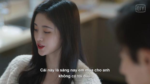 """Như Ý Phương Phi ngoại truyện: Cúc Tịnh Y """"bật mode"""" cưa cẩm, Trương Triết Hạn mắc bệnh khó chữa - Ảnh 13."""